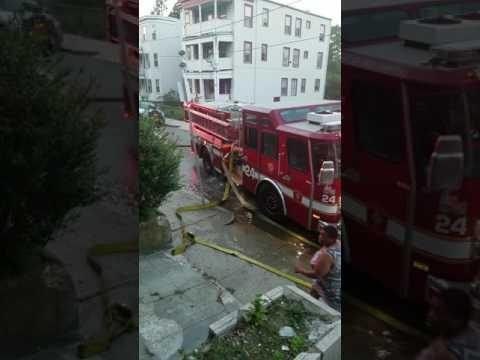 Multi alarm fire on Evelyn st. In Boston