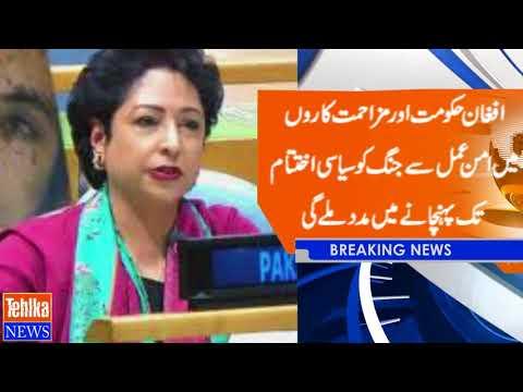 Pakistan borders suffer from cross-border terrorism. Maliha Lodhi