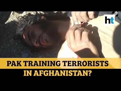 Watch: Pak terrorist caught in Afghanistan, was training for violence in J&K